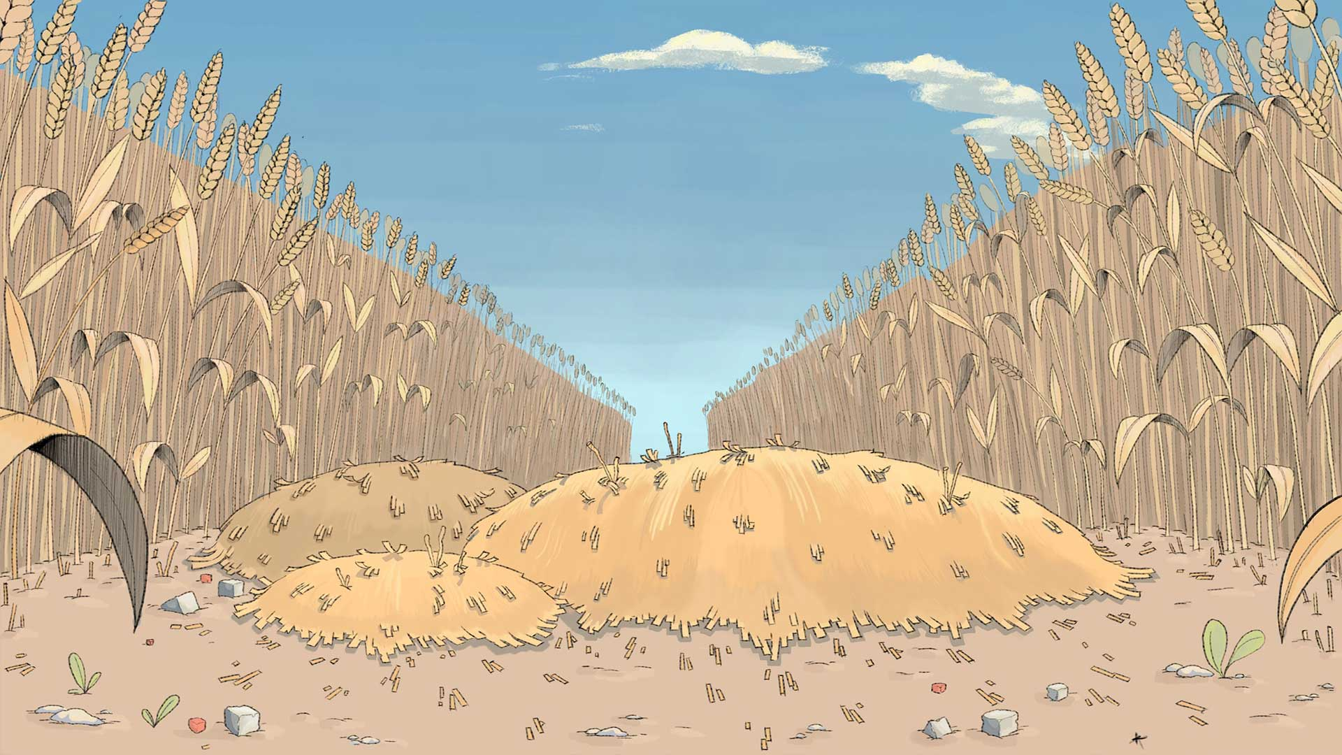illustration of a field of wheat on a sunny day