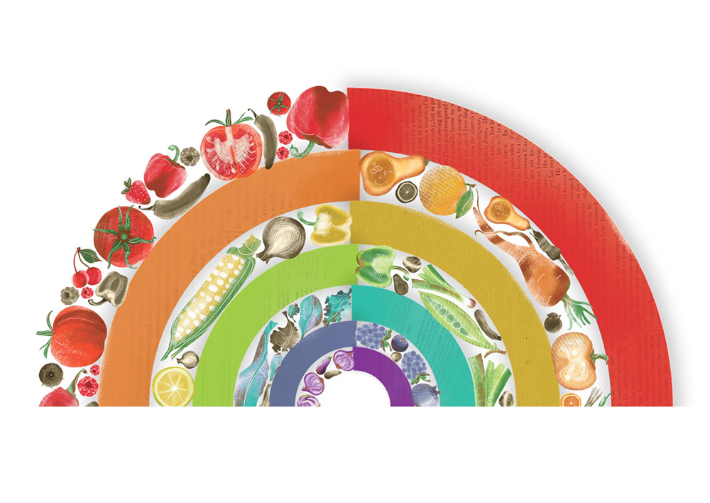 Illustration of a rainbow half made out of fruit